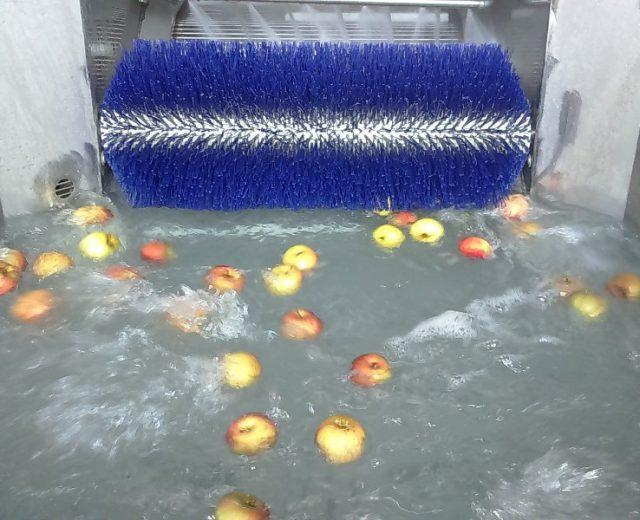 Obstwäscher