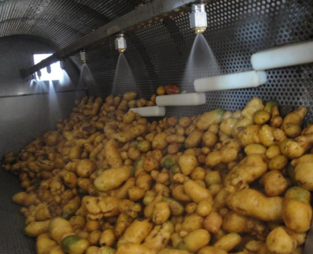 Kartoffelwäscher