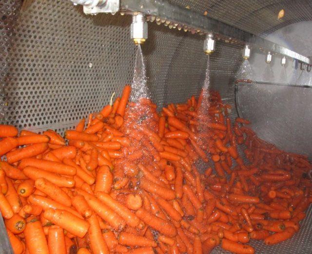 Gemüse-Trommelwaschmaschine