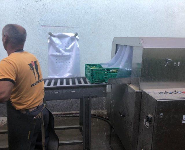 Ausgabe der Gemüse Waschmaschine